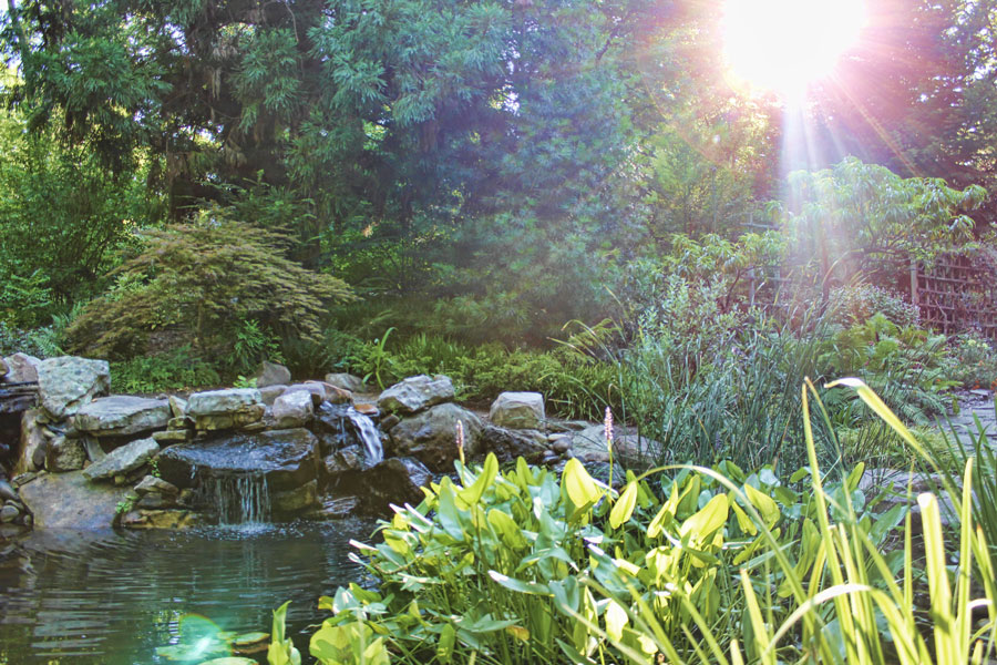 Uncc Botanical Gardens Peepsake Studios 39 Blog